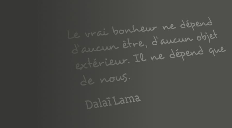 Citation du Dalaï Lama : Le vrai bonheur ne dépend d'aucun être, d'aucun objet extérieur. Il ne dépend que de nous.